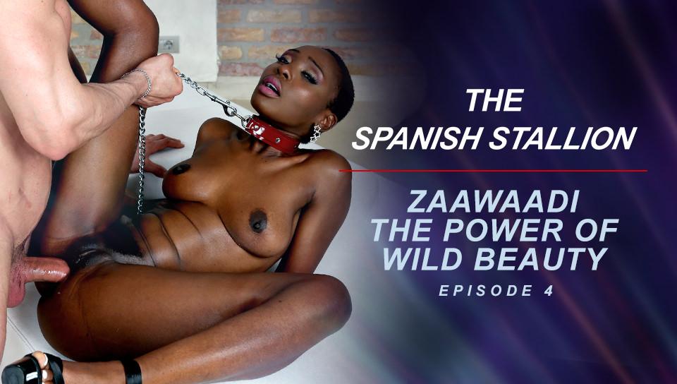 The Spanish Stallion: Zaawaadi The Power Of Wild Beauty  - Episode 4