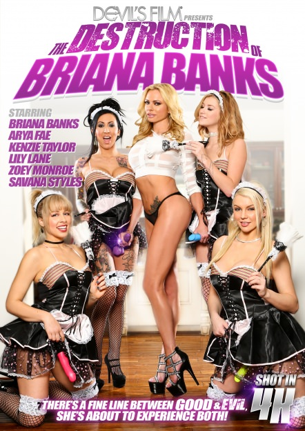 Destruction of Briana Banks Dvd Cover