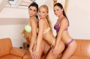 Silvia And 2 Hot Girls - Afternoon Fun picture 10